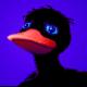 Pingviini Saarinen