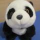 Moyen Panda